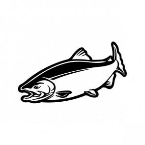 Salmon Fish 06084
