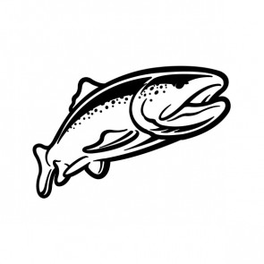 Trout Fish 06085