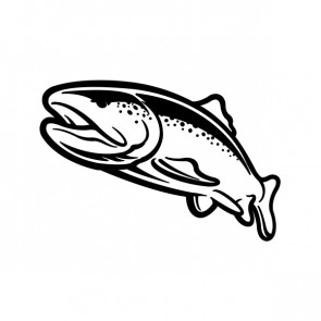 Trout Fish 06086