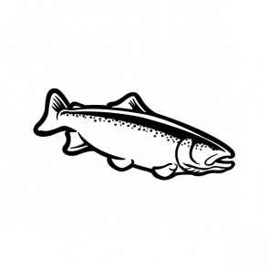 Trout Fish 06087