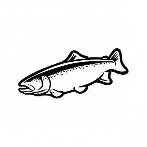 Trout Fish 06088