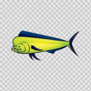 Dorado Dolphin Fishing 06178