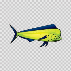 Dorado Dolphin Fish 06179
