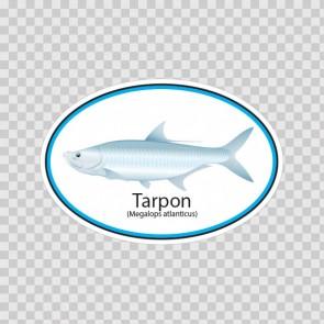 Tarpon Fish 06218