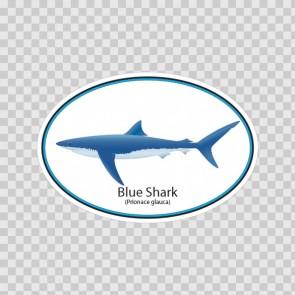 Blue Shark 06219