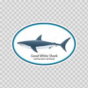 Great White Shark 06220