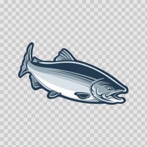 Salmon Fish 06247