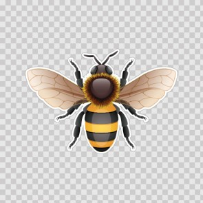 Bee Wasp Hornet Illustration 06503