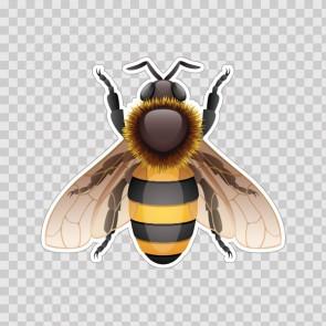 Bee Wasp Hornet Illustration 06504