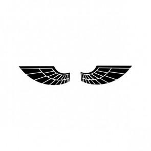 Pair Of Wings 06603
