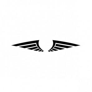 Pair Of Wings 06620