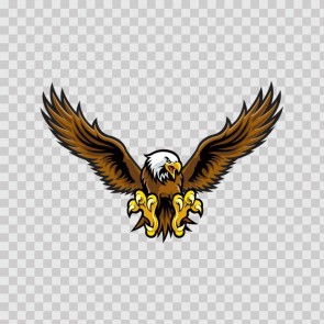 Eagle Hawk 07100