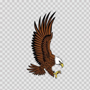 Bald Eagle Attack 07120
