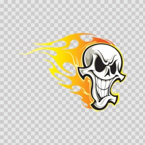 Skull In Flames 08133