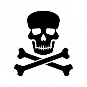 Crossbone Skull 08558
