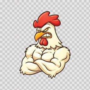 Bodybuilder Rooster 08779