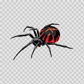 Spider 09265