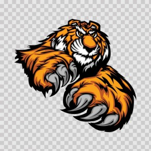 Tiger Attack 09931
