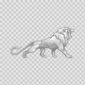 Male Lion 09939