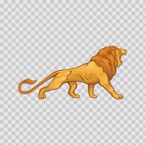 Male Lion 09941