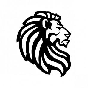 Male Lion 09955