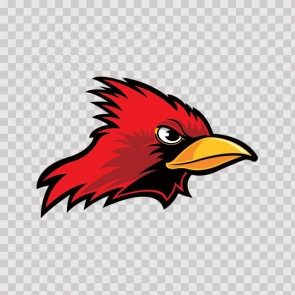 Cardinal Head 09994