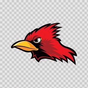 Cardinal Head 09995