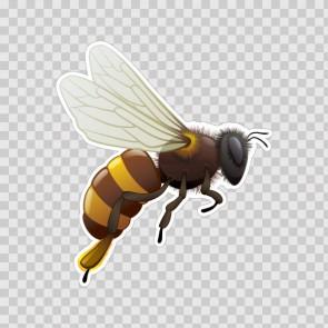 Bee, Hornet, Wasp, Vespa 10001