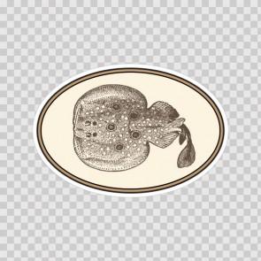 Flatfish 10037