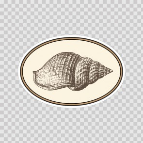 Shell 10038