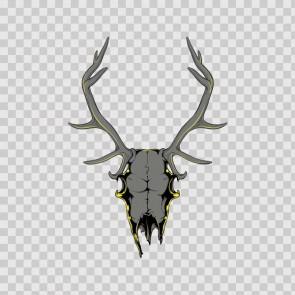 Deer Skull 11598