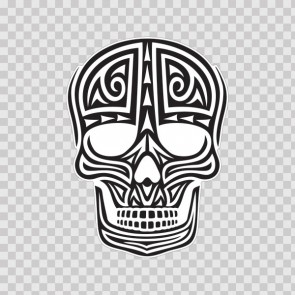 Ancient Skull 11739