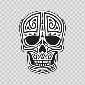 Ancient Skull 11740