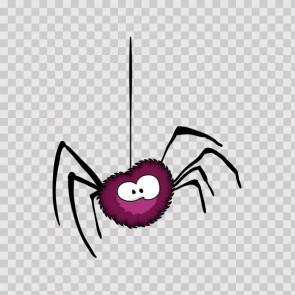 Little Spider 12177