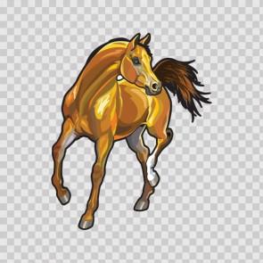 Horse 12435