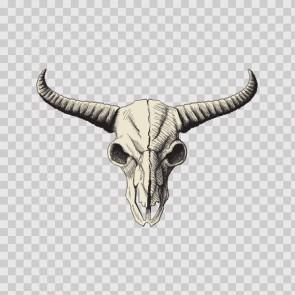Cow Desert Skull 12445