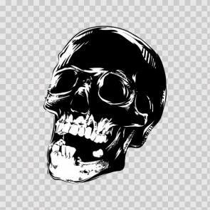Death Skull 12488