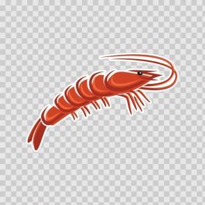 Shrimp 12957