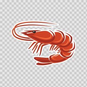 Shrimp 12960