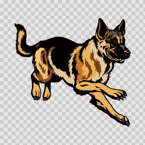 German Shepherd Dog 13244