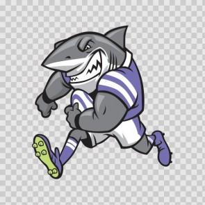Football Shark  13337