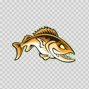Salmon Fish 13374