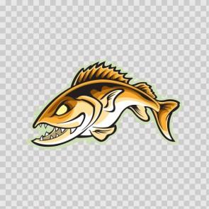 Salmon Fish 13375