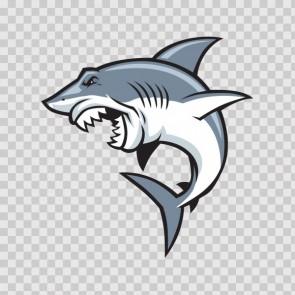 Shark Attack 13811