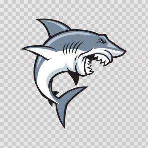 Shark Attack 13812