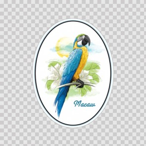 Macaw Parrot 13833