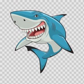 Shark Smiling Jaws 13856