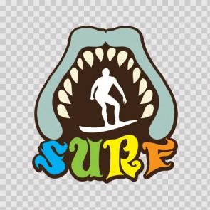 Surf Shark 13948