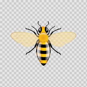 Bee 14716