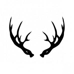 Deer Horns 15372